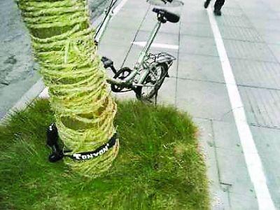 叶青昨日丢失的自行车 叶青 摄
