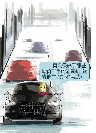 """怕受气 新手司机上路拒贴""""实习""""标志"""