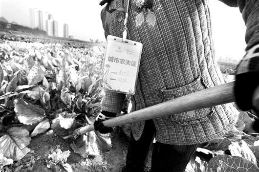 图为:城市里的农民