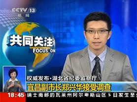 宜昌女副市长郑兴华被查 或涉副省长落马案