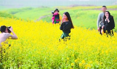 府河李家墩段,来自武汉轻工大学的学生正在油菜地里拍摄毕业季写真集