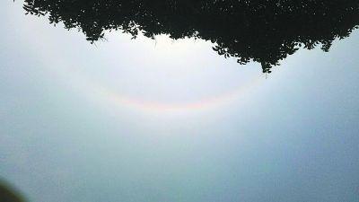 昨天上午11点半,记者在东湖落雁岛拍到的日晕现象。记者高星 摄
