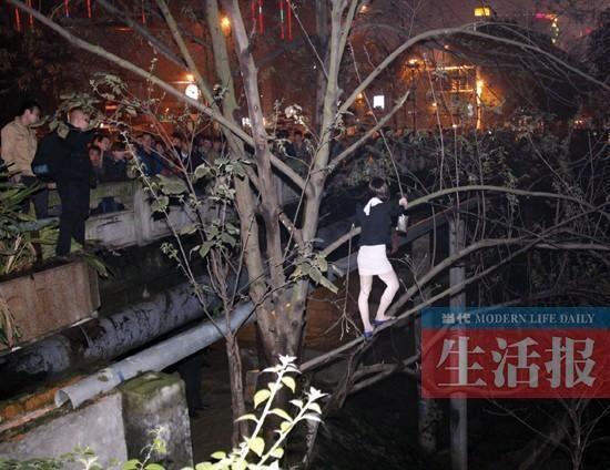 南宁站街女遇民警爬树对峙