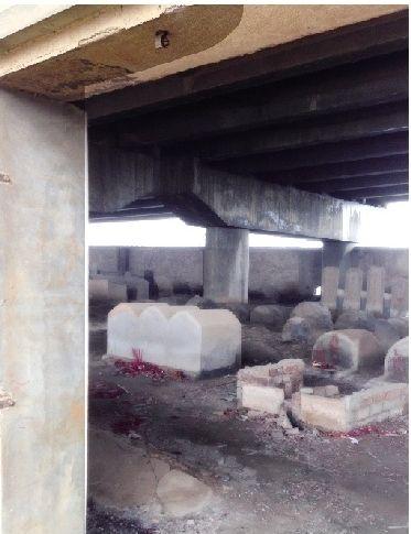图为:百余坟墓位于桥下围墙内