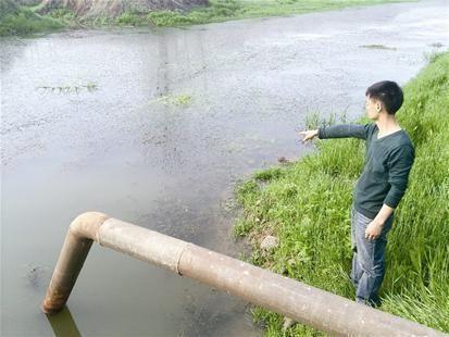 浑浊的水厂取水口,水里长满了水草