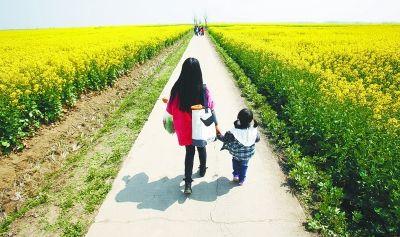 图为市民在油菜花田里寻找春天。 记者王翮 摄