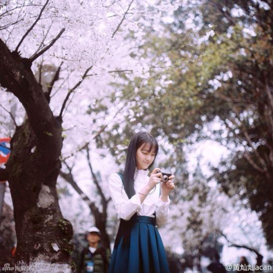 武大女神赏樱花 清秀淡雅尽显文艺范儿