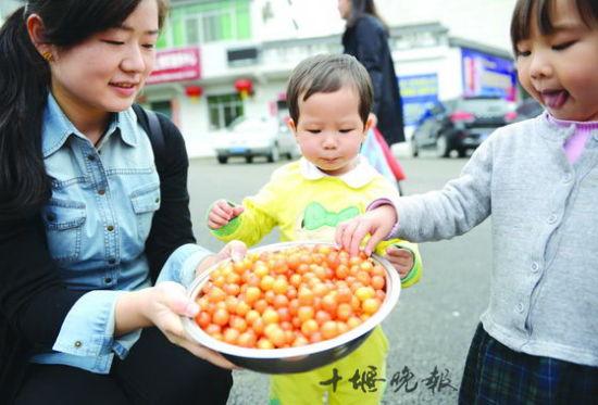 十堰本地草莓樱桃渐红