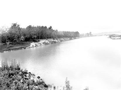 楚天金报讯 图为:林地被挖毁成深水坑