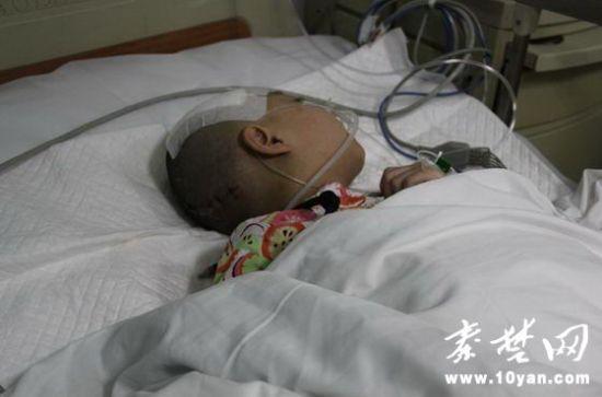半个多月过去了,受伤女童仍躺在医院昏迷不醒