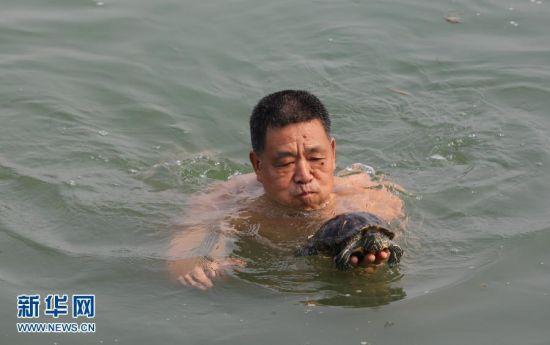 人龟同泳 湖北一市民与红耳龟畅游汉江