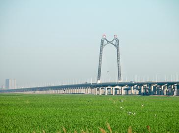 湿地高架桥