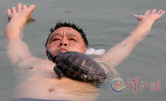 襄阳男子汉江里与红耳龟戏水