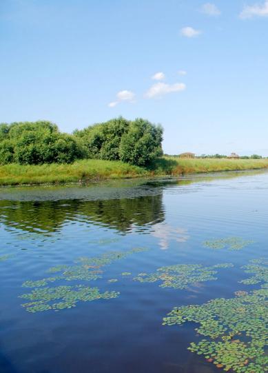 太阳岛湿地