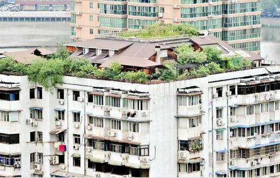 武汉一业主买下整个居民楼顶建空中花园别墅(图)