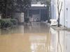 沙市纺织厂被水淹