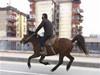 男子骑马逼车让路