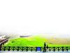 武汉江滩造海棠园