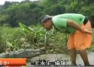 男子用嘴挑逗鳄鱼