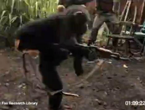 猩猩持枪扫射士兵